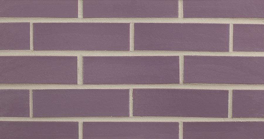 Violet (G14-1388)