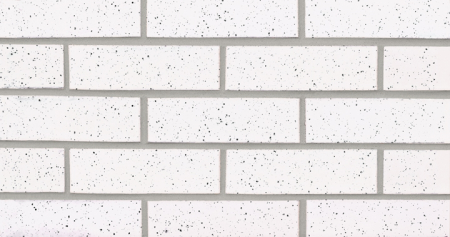 Oyster White with Speck (G825)